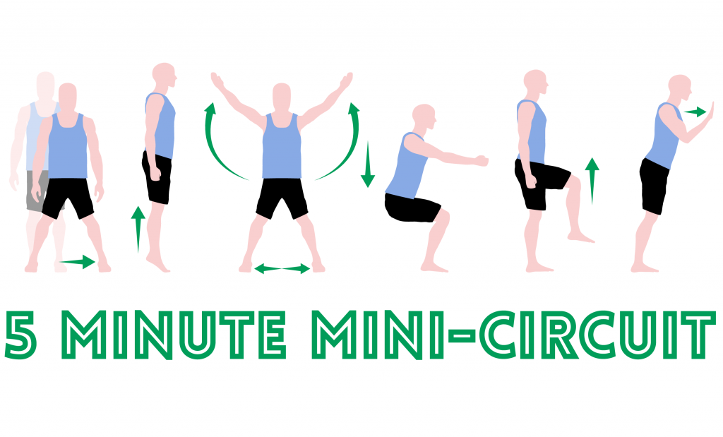 5 Minute Mini Circuit