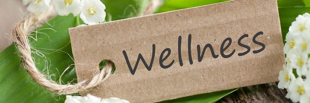 wellness-connection-13573090 - wellness
